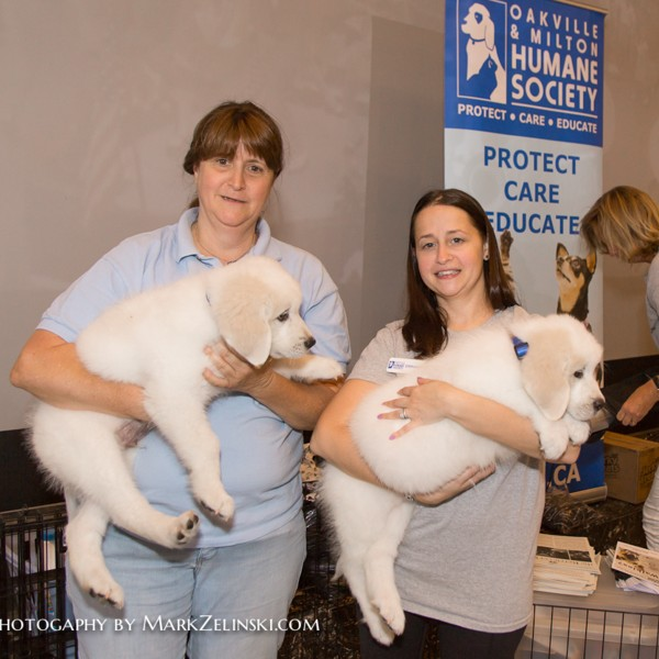 Movies and charity! The Oakville & Milton Humane Society brought special guests to the theatre.